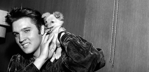 Elvis Presely with his dog